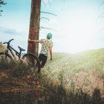 choose a mountain bike