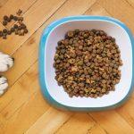 dog food shopping tips